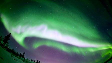 auroramax