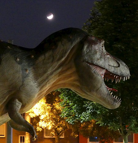 Dino City Bochum Karte.Https Skyweek Wordpress Com 2019 08 13 Allgemeines Live Blog Ab